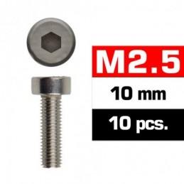 TORNILLOS M2,5x10mm...